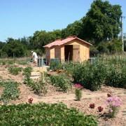 jardins-solidaires