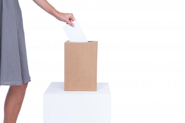 Le Registre Électoral Unique (REU)